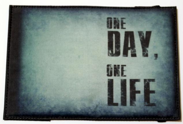 Теория одной жизни