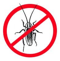 уничтожение тараканов и борьба с тараканами