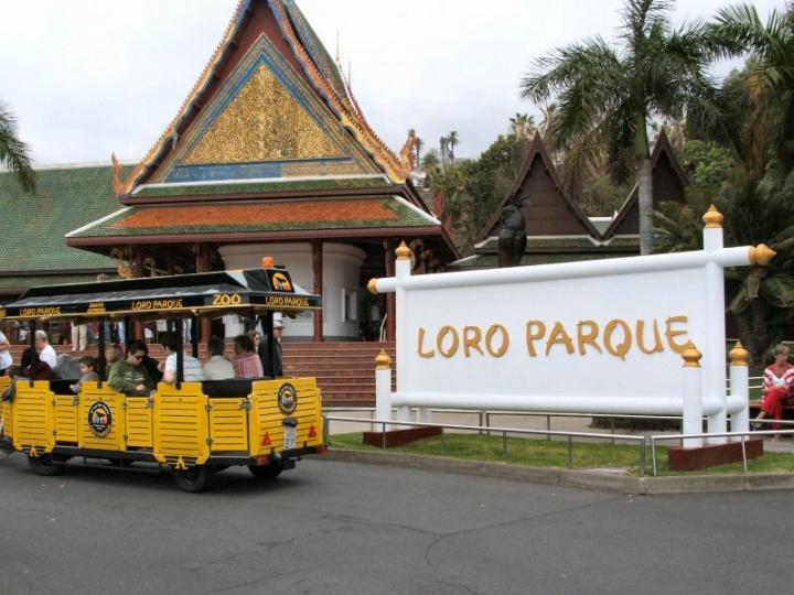 Парк Лоро в Тенерифе (Канарские острова, Испания)