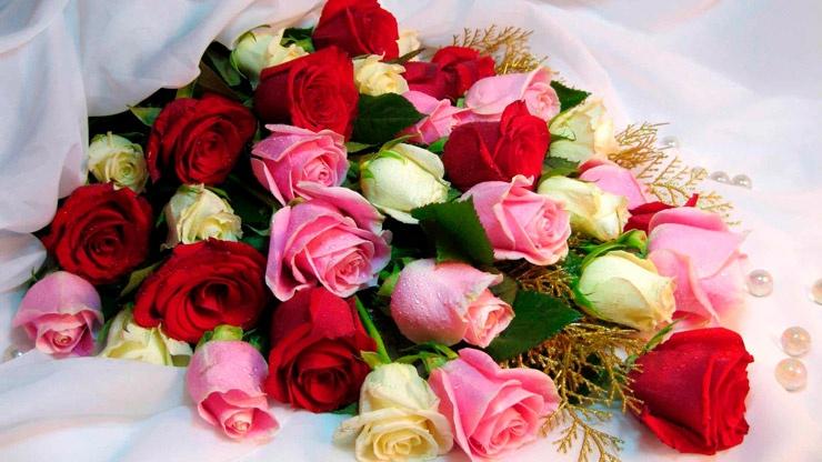Как выбрать розы для букета